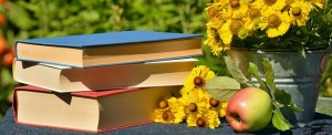 books-1757734_640
